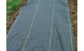 Tarpaulin 1,5x6,5m, weight 70 g/m². Price per piece VAT incl. Free shipping
