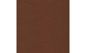 PVC Leather, Budget+, width 145cm, weight 450g/m², Brown. Free shipping!