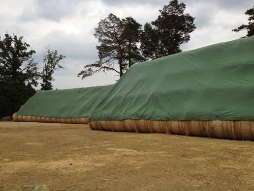 Tents 75 g/m², 12x14 m