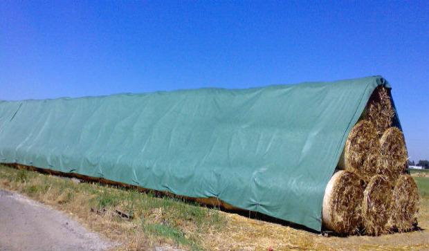 Tents 75 g/m², 6x10 m