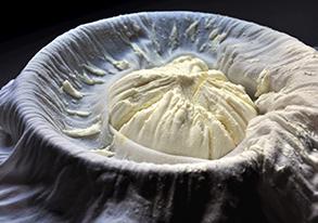 Audums biezpiena ražošanai