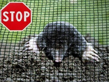 Anti-mole mesh, width 200cm, weight 120g/m². Price per roll 200m², VAT incl.